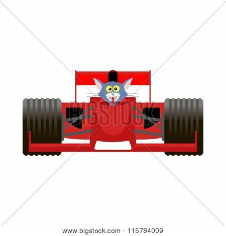 Cat Driving A Red Racing Bolide Car