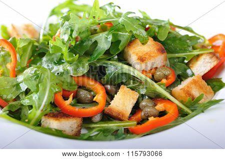 Fresh rucola salad