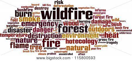 Wildfire Word Cloud