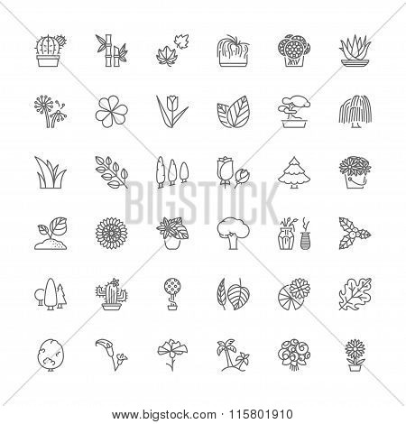 Line Icons. Flowers, Plants And Trees