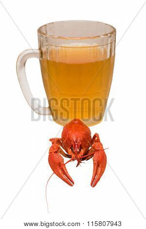 Photo Of The River Boiled Crayfish Against A Beer Glass