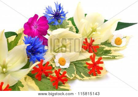 Bouquet Of Beautiful Wildflowers, Chamomiles, Chrysanthemums, Petunia,  Yucca Isolated On White
