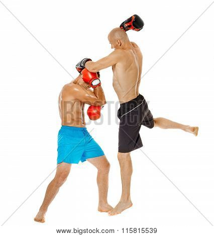 Kickbox Fighters Sparring