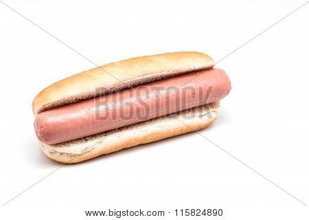 Close up of tasty hotdog. White background