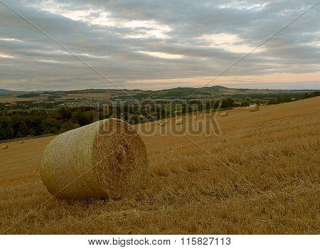 Scottish rural landscape.