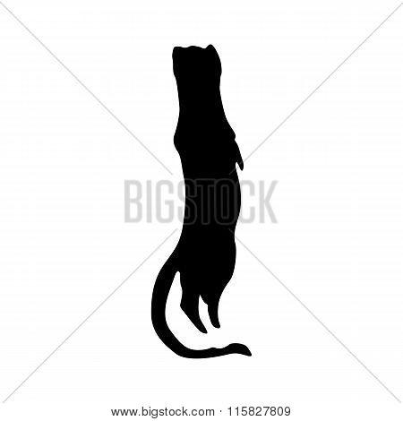 Meerkat black silhouette