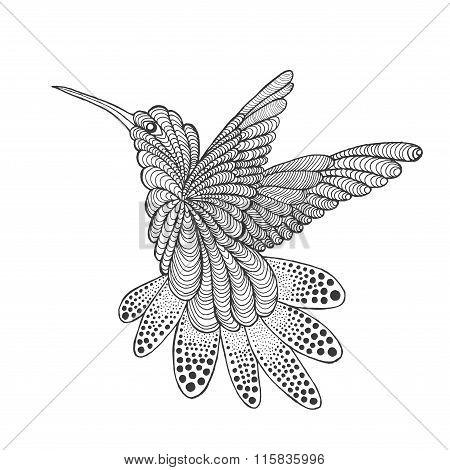 Zentangle stylized hummingbird.