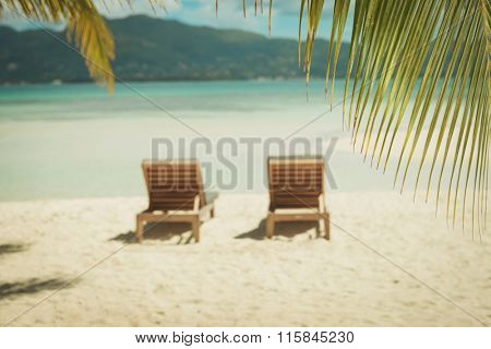 exotic picture of two sunbeds on the beach, under the palm trees in a sunny summer day