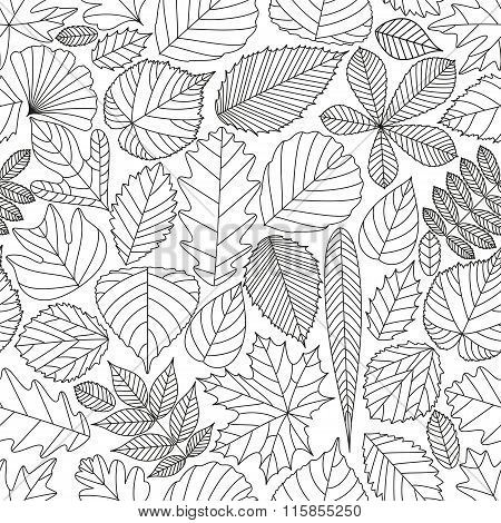 Seamless pattern with tree leaves. Various elements for design. Cartoon vector illustration. Black a