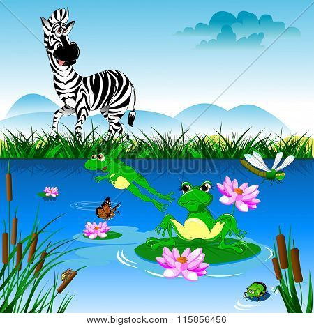 Zebra At The Watering