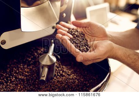 Hands over a modern appliance holding freshly roasted coffee bea