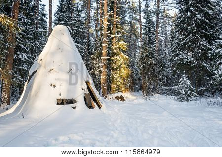 The Old Wigwam In The Forest.