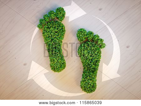 Green Footprint Concept