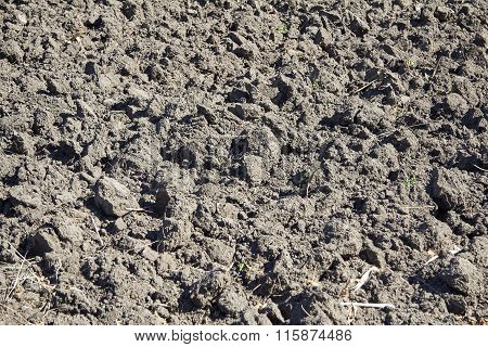 Plowed Field Close Up