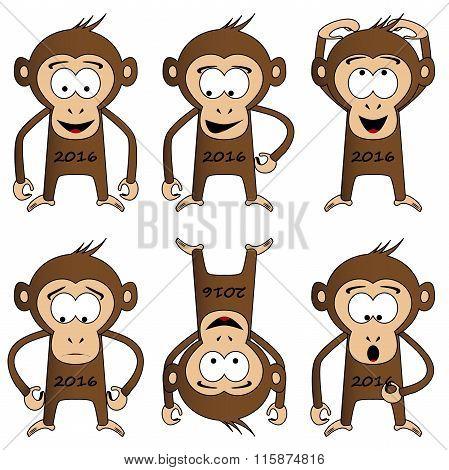 set of monkeys - a symbol of 2016