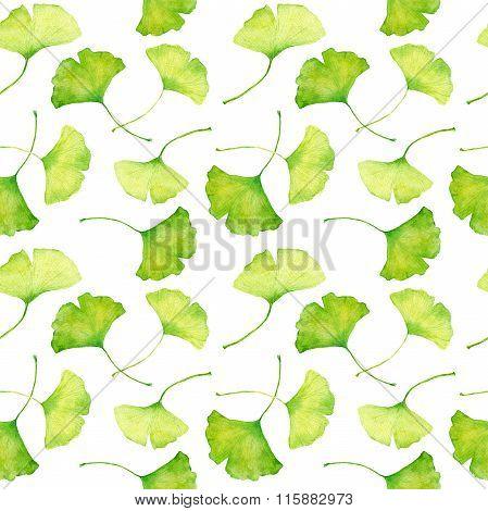 Ginkgo leaves pattern. Watercolor