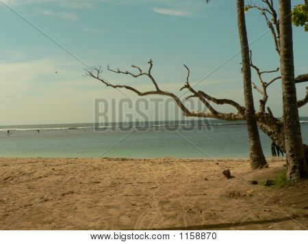 Scene Of A Lovely Beach On A Sunny Day