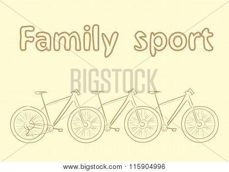 Family sport bike