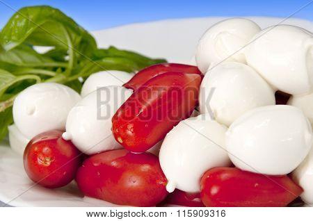 Italian Food Cherry Mozzarella Of Buffalo