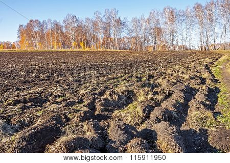 Plowed Land For Planting