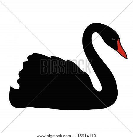 Black vector swan