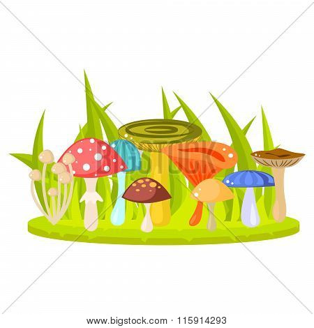 Forest Mushrooms On Grass Lawn Vector Illustration.