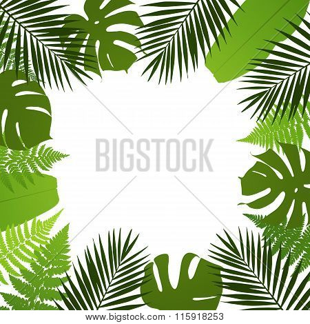 Tropical leaves background. Frame with palmfernmonstera and banana leaves. Vector illustration