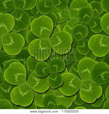 Leaves Clover Shamrock  Seamless Pattern