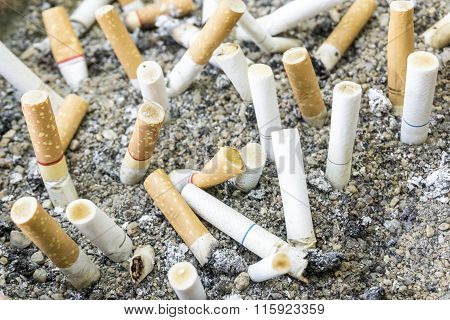 Cigarette and many crushed cigarette butts in dirty ashtray