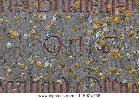 Year 1917 carved in stone covering with moss. The years of World War I.