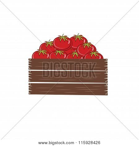 Red Ripe Tomatoes In Crate Vector Illustration Isolated On White