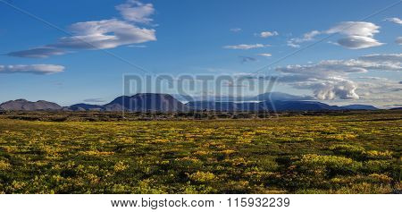 Moss covered lava field and volcano mount near lake Myvatn summer landscape Iceland