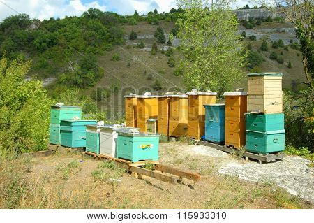 Bee hive in Crimean mountains