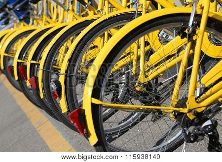 Bicycles In The Store Of The Urban Bike-sharing To Move Into Eco