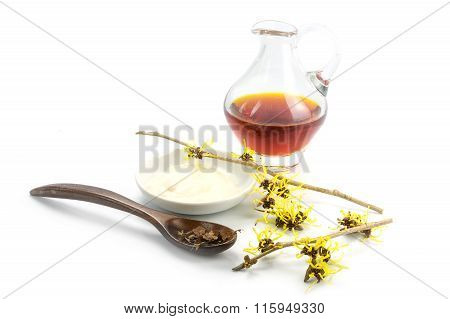 Flowering Witch Hazel (hamamelis), Dried Leaves, Cream And Essence For Homemade Cosmetics  Isolated