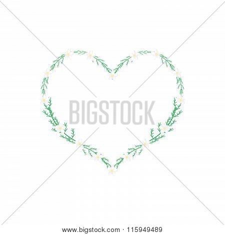 White Yarrow Flowers In A Heart Shape Frame