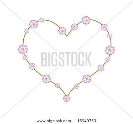 Purple Cosmos Flowers in A Heart Shape