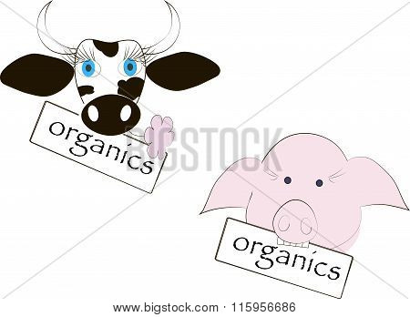 Black and white cow head, blue eyes, pink flower, pink pig's head, the inscription of Organics
