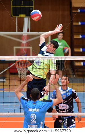 KAPOSVAR, HUNGARY - JANUARY 16: Alex Rasa (in green) in action at a Hungarian National Championship volleyball game Kaposvar (green) vs. Sumeg (blue), January 16, 2016 in Kaposvar, Hungary.