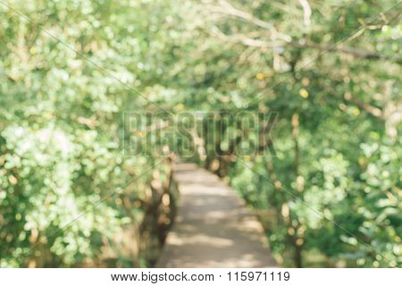 Blurred background : Walking trail in lush green tropical forest.