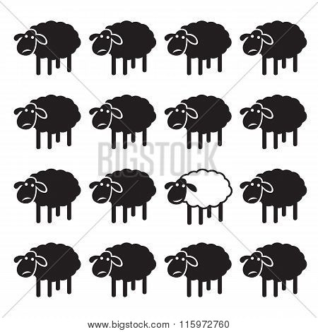 Single White Sheep In Black Sheep Group. Dissimilar Concept