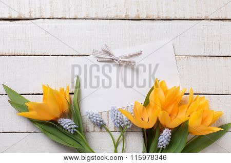 Yellow Tulips And Blue Muscaries Flowers  And Empty Tag