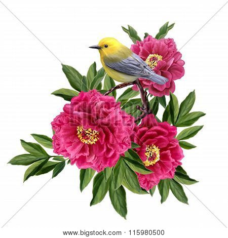 Little Yellow Bird Sitting On A Branch Of Red Peony Flowers