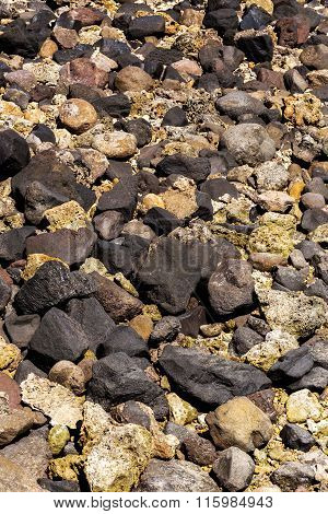 Stones And Coral In Low Tide, Indonesia