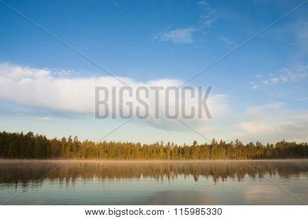 Forest lakeside landscape at summer morning