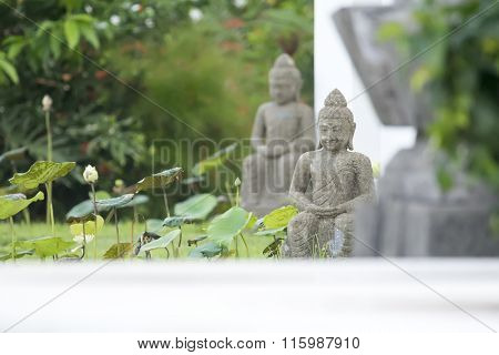 An image of a buddha statue in the garden