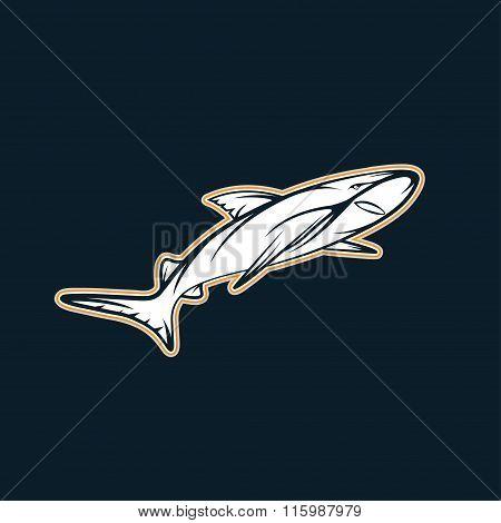 Shark Sport Team Mascot Vector Design Template