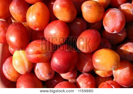 Plums Close Up