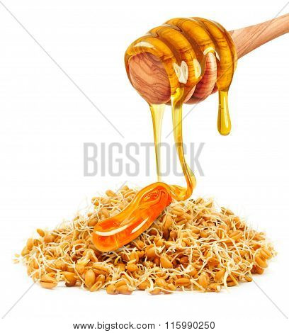 wheat germ and honey