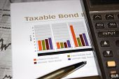 Taxable Bond Ver 2